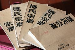 Shengshi stamträd royaltyfri fotografi