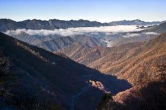 shennongjia för berg för porslinhubei liggande Royaltyfria Bilder