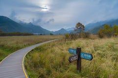 Big Nine Lakes of Hubei Shennongjia Forest royalty free stock image
