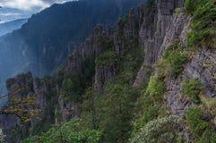 ShenNongJia Shennong dolina fotografia royalty free