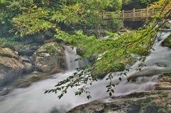 ShenNongJia Tiansheng mosta strumień i siklawa obraz royalty free