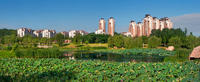 Shenyang Tahiti Stock Photo