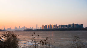 Shenyang winter scenery Stock Image