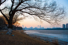 Shenyang winter scenery Stock Photo