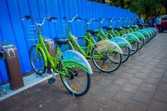 SHENZEN, КИТАЙ - 29-ОЕ ЯНВАРЯ 2017: Автостоянка велосипеда города, строка зеленых велосипедов соединилась к автоматическим машина Стоковое Изображение RF