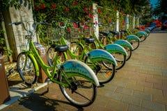 SHENZEN, КИТАЙ - 29-ОЕ ЯНВАРЯ 2017: Автостоянка велосипеда города, строка зеленых велосипедов соединилась к автоматическим машина Стоковые Фото