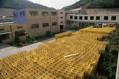 Shenzen Brewery Stock Image