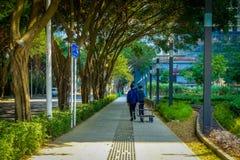 SHENZEN, CHINA - 29 DE ENERO DE 2017: Calles y sorroundings, mezcla hermosa del centro urbano de árboles verdes como caminar de l Fotografía de archivo libre de regalías
