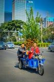 SHENZEN, CHINA - 29 DE ENERO DE 2017: Vecindad de Nan Shan, calles y sorroundings, mezcla hermosa del centro urbano de verde Foto de archivo libre de regalías