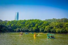 SHENZEN, CHINA - 29 JANUARI, 2017: Het binnenlian hua shan-park, groot recreatief gebied, watermeer sorrounded door bomen royalty-vrije stock afbeelding