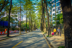 SHENZEN, CHINA - 29 JANUARY, 2017: Charming city street with tall green trees on both sides, some buildings visible Royalty Free Stock Photography