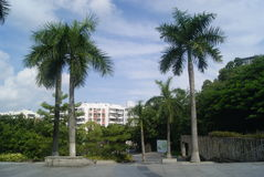 Shenzhen Baoan park landscape Royalty Free Stock Image