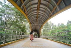 Shenzhen baoan road pedestrian overpass, in china Royalty Free Stock Photography