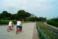 Shenzhen Bay Park, cycling tourists Stock Image