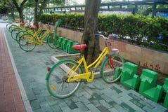 Shenzhen, China: Bürgersteigsfahrradanlagen Lizenzfreie Stockfotos