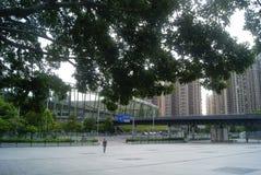 Shenzhen, China: Baoan stadium square landscape Royalty Free Stock Photography