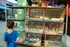 Shenzhen, China: bird and flower market Stock Photos