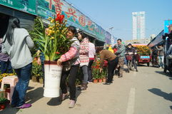 Shenzhen, China: Bloemmarkt Royalty-vrije Stock Foto