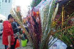 Shenzhen, China: Bloemmarkt Stock Afbeelding