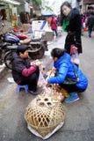 Shenzhen china: buy eggs Stock Images