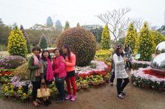 Shenzhen, China: Chrysanthemum exhibitions. Shenzhen Luohu East Lake Park, organized chrysanthemum exhibitions. Visitors to watch or take photographs Royalty Free Stock Photos