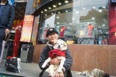 Shenzhen, China: der alte Mann und der Hund Lizenzfreies Stockbild