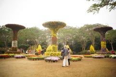Shenzhen, China: Exposição do crisântemo Imagem de Stock Royalty Free