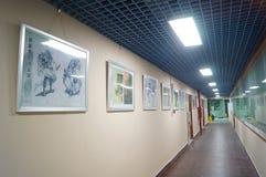 Shenzhen, China: Exposición de la historieta Fotos de archivo