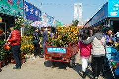 Shenzhen, China: Flower Market Stock Photos