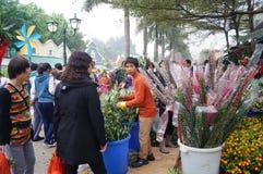 Shenzhen, China: Flower Market Royalty Free Stock Images