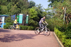 Shenzhen, china: green road landscape Royalty Free Stock Photos