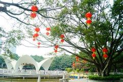 Shenzhen, China: lagos e paisagem do iate Imagens de Stock