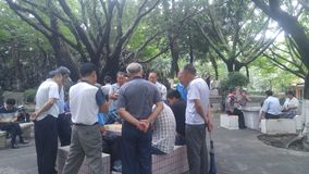Shenzhen, China: middle-aged and elderly men play chess. In the morning, in Xixiang Park of Shenzhen, the middle-aged and old men played chess as entertainment stock images