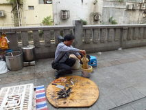 Shenzhen, China: open air chicken stall Royalty Free Stock Photography