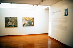 Shenzhen, China: Overseas Chinese Women Artists Works Exhibition Stock Photos