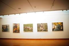 Shenzhen, China: Overseas Chinese Women Artists Works Exhibition Stock Photo