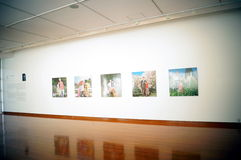 Shenzhen, China: Overseas Chinese Women Artists Works Exhibition Royalty Free Stock Images