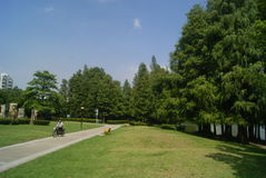 Shenzhen, China: Park Landscape Stock Photo