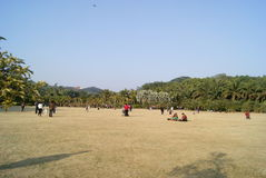 Shenzhen, china: park lawn to play Stock Photo
