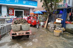 Shenzhen, China: peel the oysters Royalty Free Stock Photo