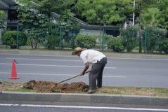 Shenzhen, China: planting trees Stock Photo