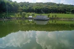 Shenzhen, China: pond landscape Royalty Free Stock Images