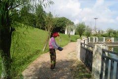 Shenzhen, China: pond landscape Royalty Free Stock Photos