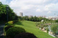 Shenzhen, China: pond landscape Royalty Free Stock Image