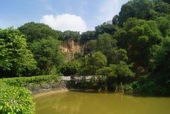 Shenzhen, China: pond landscape Stock Image