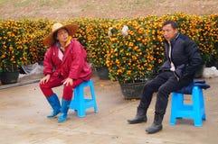 Shenzhen, China: Sales of Chinese New Year orange tree Stock Photography