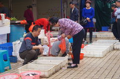 Shenzhen, China: Seafood Market Royalty Free Stock Image