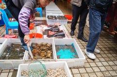 Shenzhen, China: Seafood Market Royalty Free Stock Photo