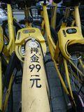 Shenzhen, China: Shared Bicycles Parked on the Street royalty free stock image