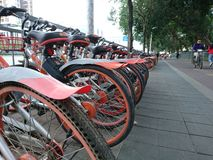 Shenzhen, China: Shared Bicycles Parked on the Street royalty free stock photography